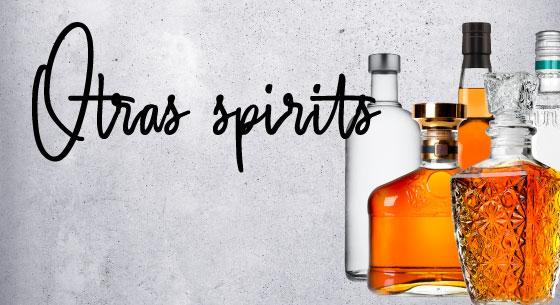 Pagina-web-Home-Spirits